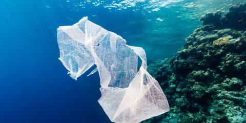 CaboVerde Boavista rifiuti plastica