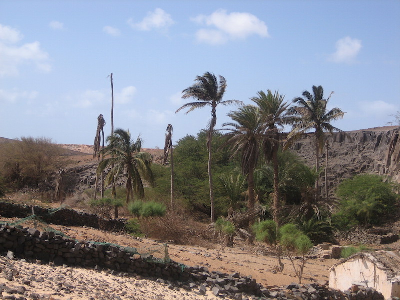 Boavista deserto