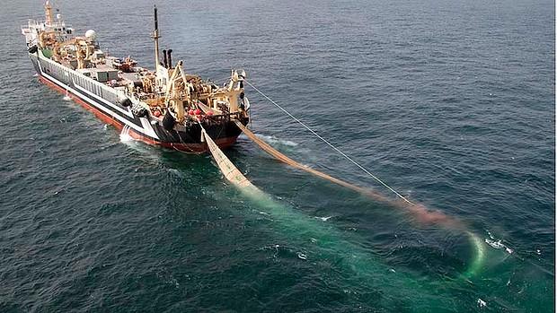 Pesca intensiva a Capoverde