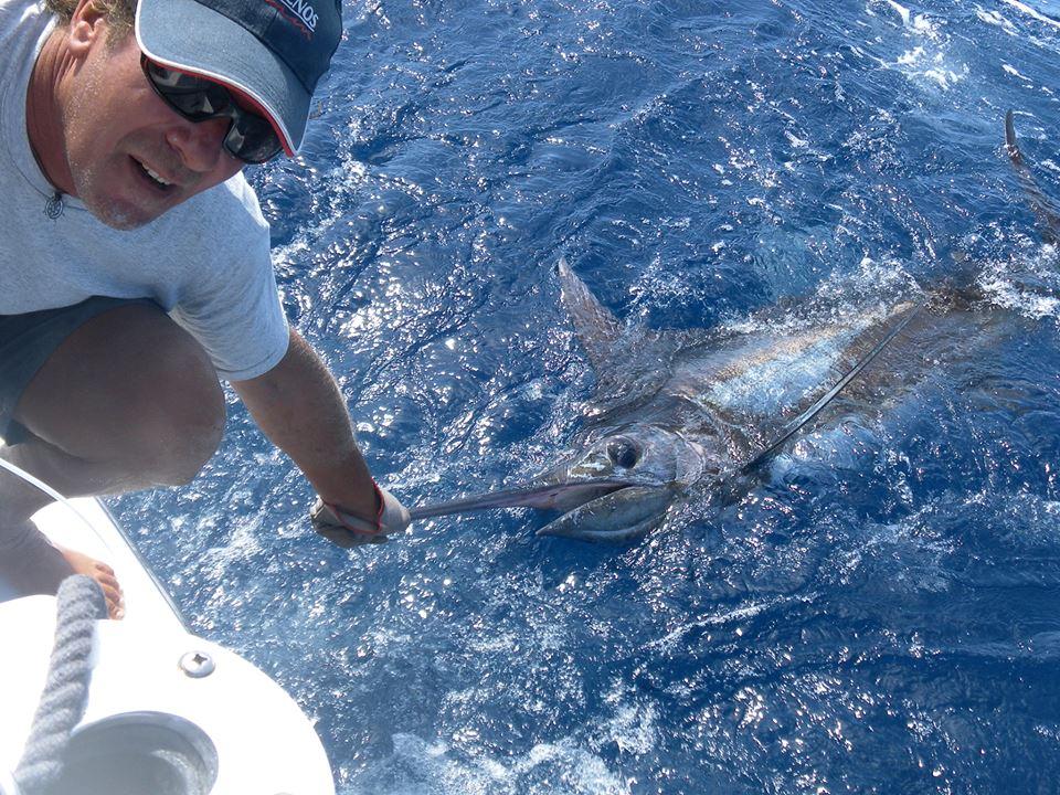 Marlin Capo Verde