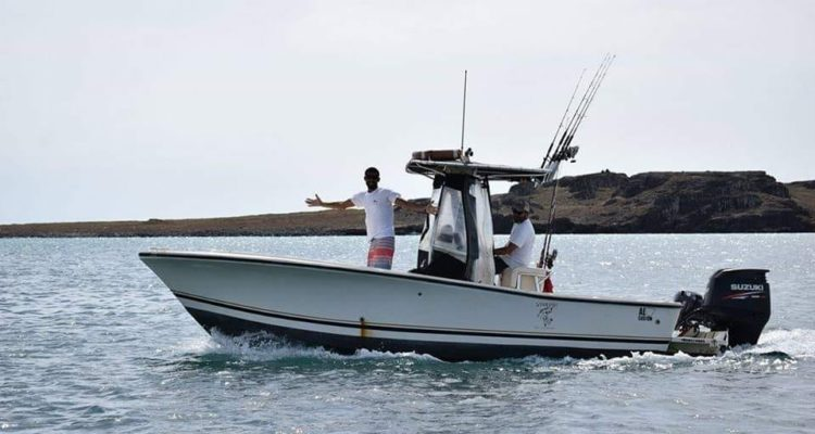 Vertikal jigging charter pesca